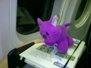 Cat-o-naut in the plane and on my travel journal